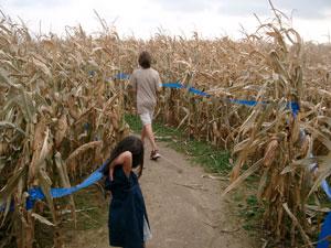 とうもろこし畑の迷路(Corn Maze)