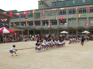 綱引き(幼稚園の運動会)