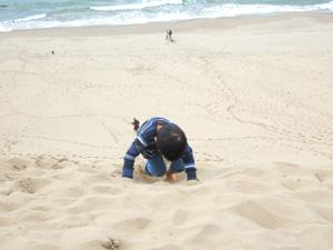 鳥取砂丘にて,馬の背の急斜面を上り下り