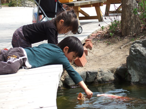 公園の鯉に餌を与える長男4歳と長女2歳