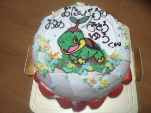 長男のバースデーケーキはナエトル