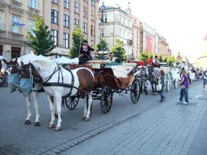 中央市場広場の馬車@クラクフ, ポーランド