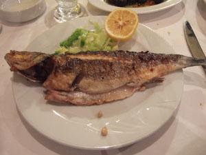 ALIMENTOの魚料理@イスタンブール, トルコ