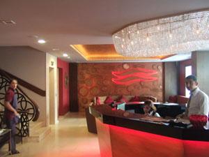 Ferman Hotelのフロントとロビー@イスタンブール, トルコ
