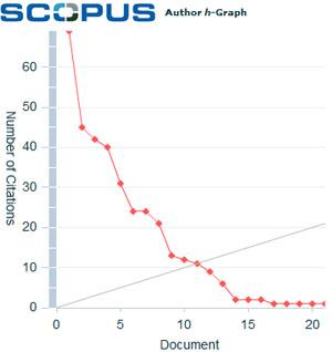 h-Graph: Scopusデータベースで表示