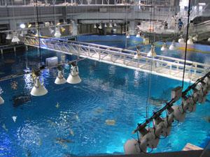 巨大水槽を上から見学@沖縄美ら海水族館