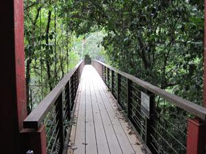 比地川の吊り橋@国頭, 沖縄