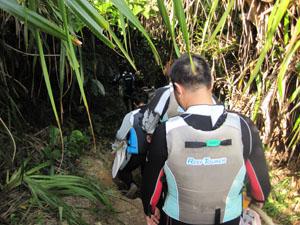 ビーチへ続く草木のトンネル@真栄田岬, 沖縄
