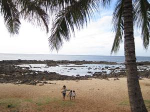 岩に囲まれた3番目のビーチ@ハワイ家族旅行