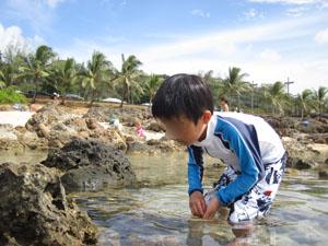 岩場に隠れた魚を探す長男6歳@ハワイ家族旅行
