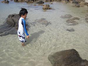 魚を呼び集める長男6歳@ハワイ家族旅行