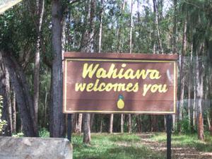 ワヒアワ(Wahiawa)の入口@ハワイ家族旅行