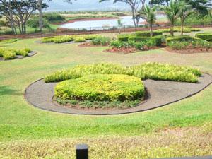 パイナップル・エクスプレスの折返し地点@ハワイ家族旅行