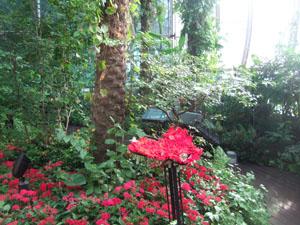 バタフライ・ガーデン@シンガポール・チャンギ空港