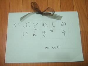 長男の自由研究「かぶとむしのけんきゅう」絵本形式完成