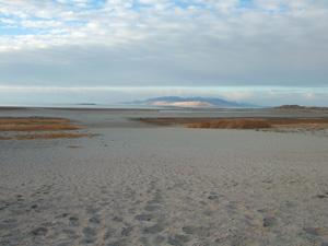 広大な砂浜@アンテロープ島州立公園