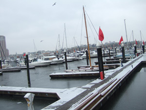 ヨットハーバーも凍てつく寒さ@バルティモア