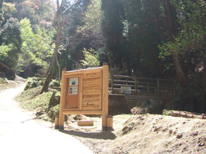 木の橋を渡っていよいよ大文字山へ@京都