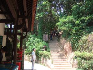 梅峰頂上の展望台へと向かう坂道@中国杭州千島湖