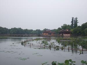曲院風荷@中国杭州西湖
