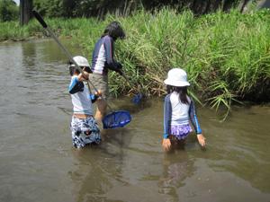 和束川で魚捕り@親子川の学校