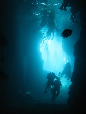 青の洞窟でダイビング@沖縄研究室旅行