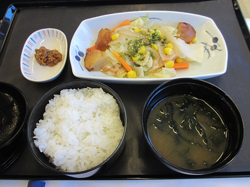 """""""鮭のちゃんちゃん焼き@成田発ムンバイ行きの機内食"""""""
