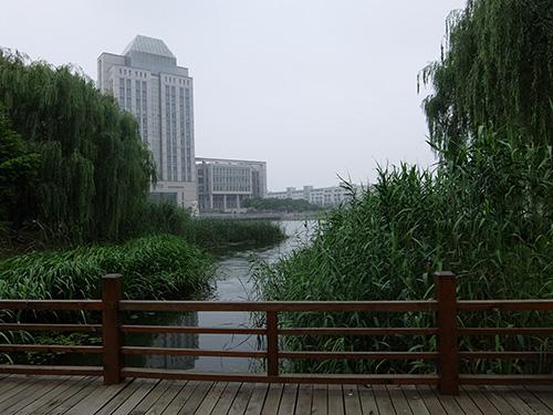 """""""緑豊かで広々としたキャンパス@江南大学"""""""
