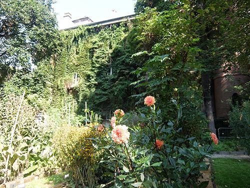 """""""小さいが雰囲気の良いブレラ植物園@ミラノ"""""""