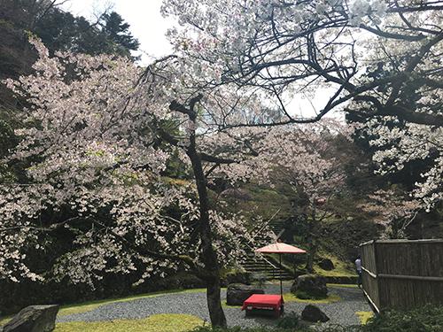 鞍馬・二ノ瀬にある白龍園.春と秋に特別公開しているが,なんと1日100人限定のため,知る人ぞ知る日本庭園.