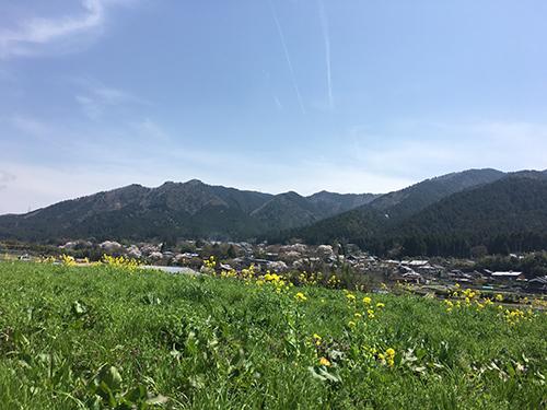 大原.のどかな田園風景に癒される.