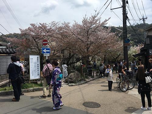 """""""大原から一気に南下して銀閣寺へ.哲学の道は元々1890年(明治23年)に完成した琵琶湖疎水の管理用道路.哲学の道は桜でも有名だが,その桜は日本画家である橋本関雪とその妻よねが1921年(大正10年)に京都市に300本の桜の苗木を寄贈したのに始まるそうだ."""""""