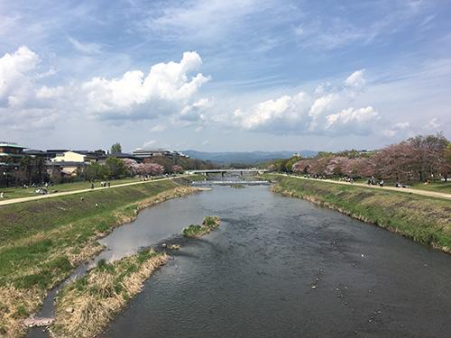 """""""鴨川.京都のど真ん中とは思えない風景.やはり鴨川はいいな."""""""