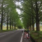 ロングライドの準備:琵琶湖一周サイクリング(ビワイチ)完走後のメモ