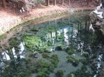 熊本訪問その6:物凄く綺麗な白川水源の美味しい水でコーヒーを飲む