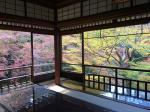 京都八瀬の瑠璃光院の紅葉が素晴らしい